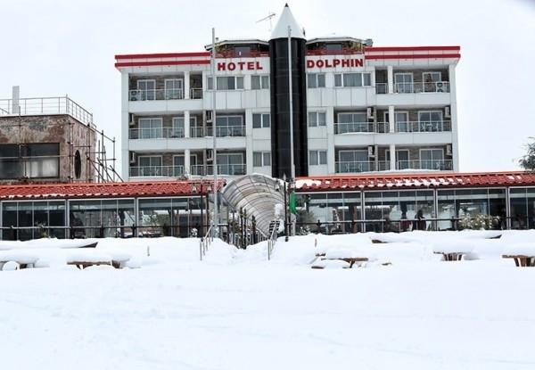 هتل دلفین